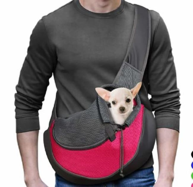 extra small dog carrier