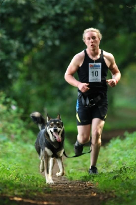 run with your dog