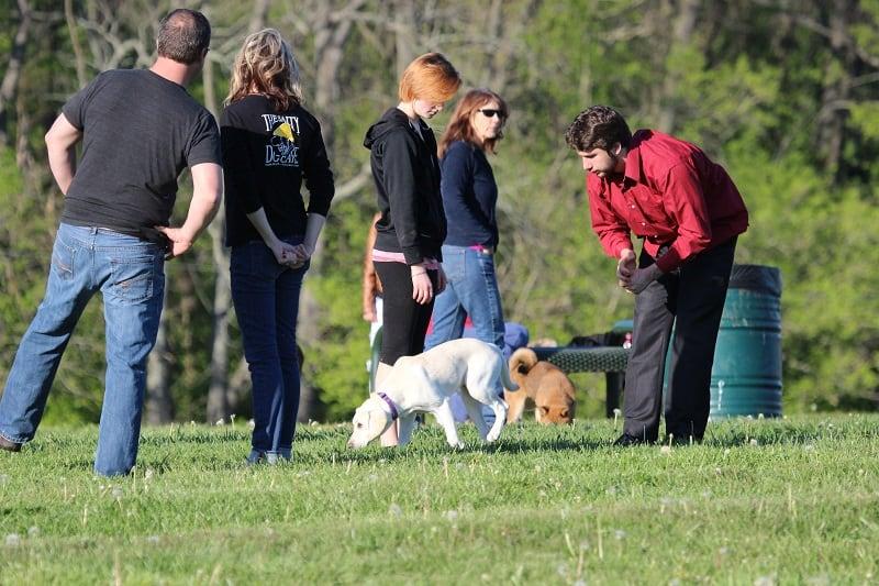 unleashed dog parks