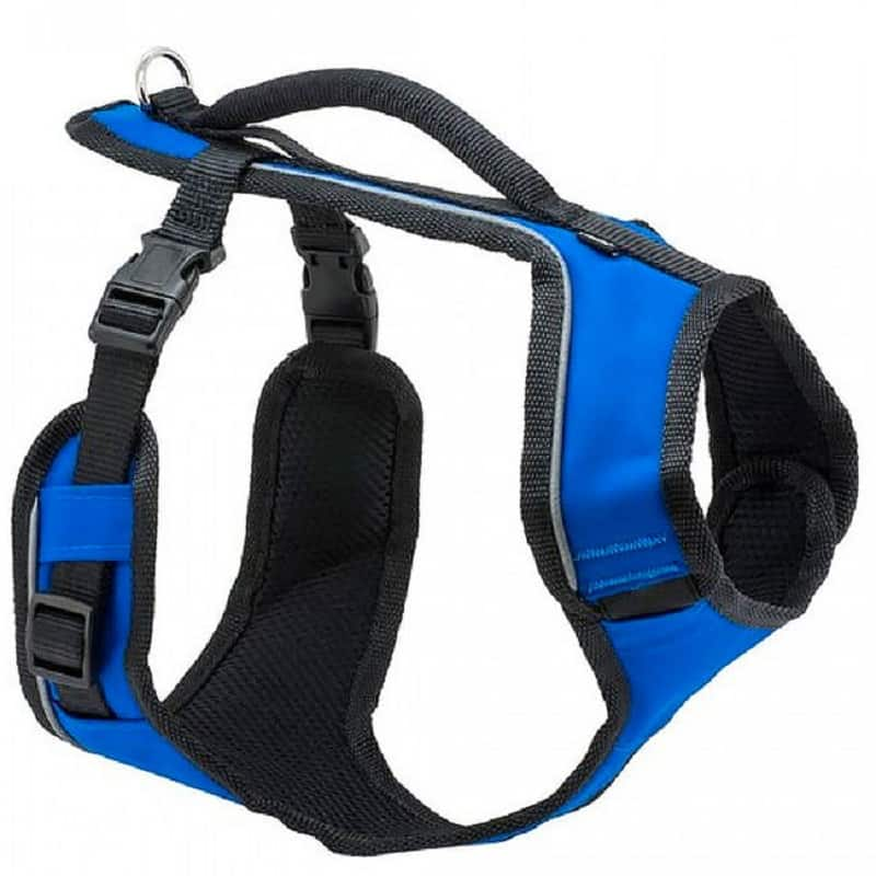 Petsafe Easysport harness review