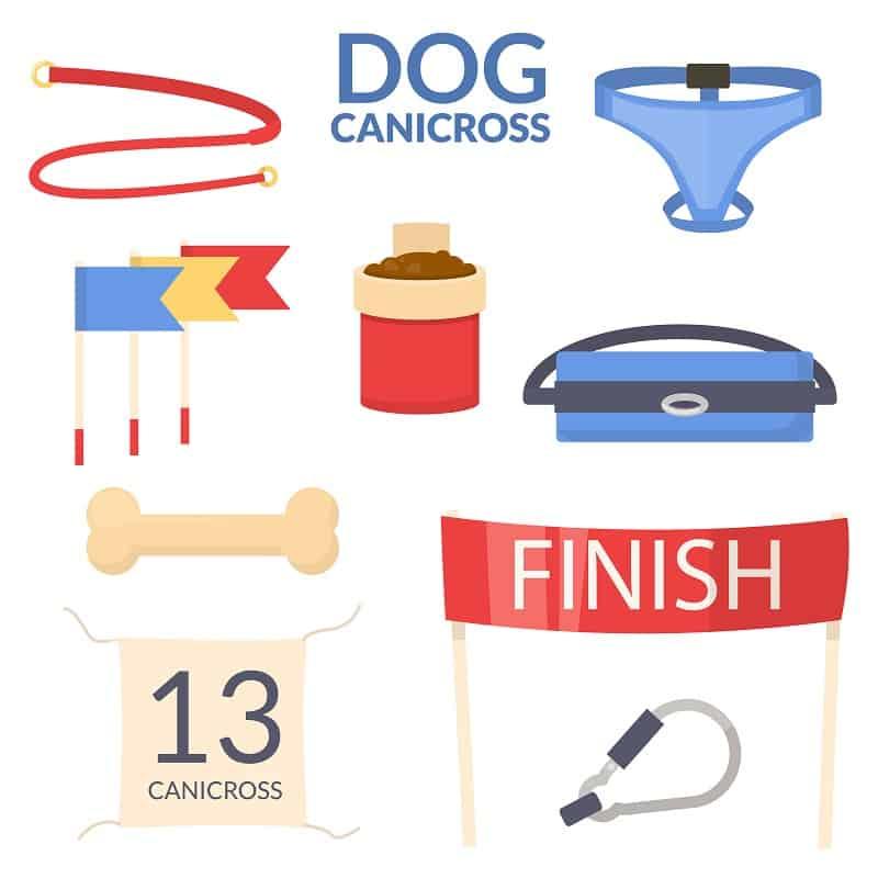 canicross gear