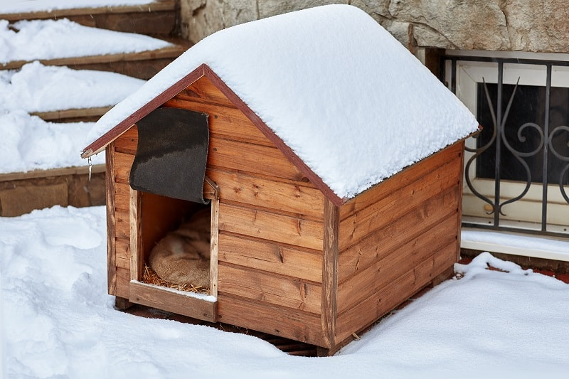 dog house suitable for winter conditions