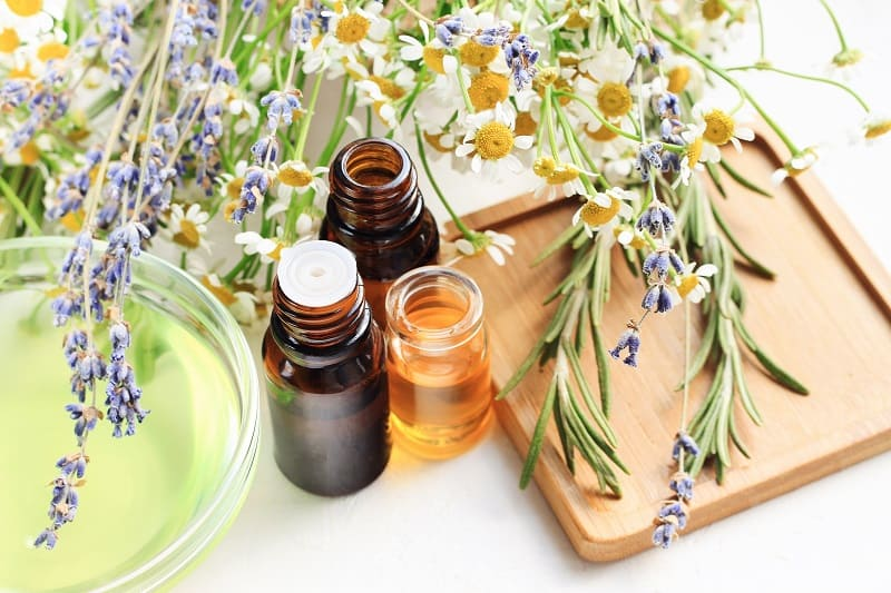 Essential oils for fleas in the house