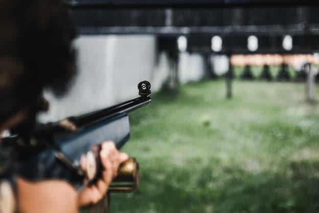gun shots create fear in dogs